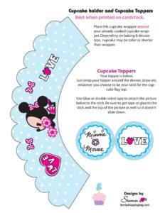 Minnie Cupcake Wrap Set