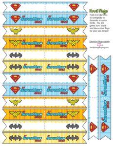 Food Flags DC Super Hero Girls