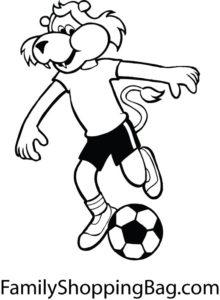Lion Soccer