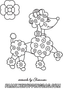 Poodle color page
