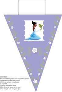 Banner Princess Frog